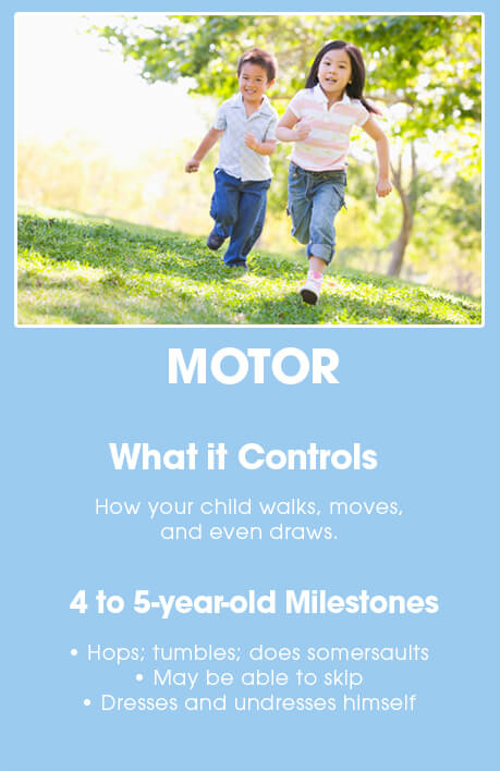 4-5 year old brain development: Motor
