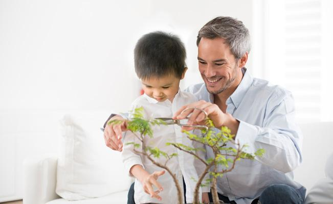 Brain Development Techniques: Alternative Hobbies